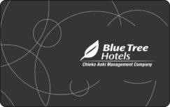 19- Blue Tree Hotéis